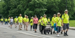 More than 100 Walkers on Gouin Boulevard