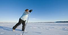 2013  Azur winter newsletter