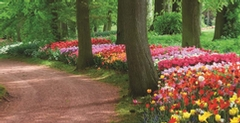 2014 Azur spring-summer newsletter